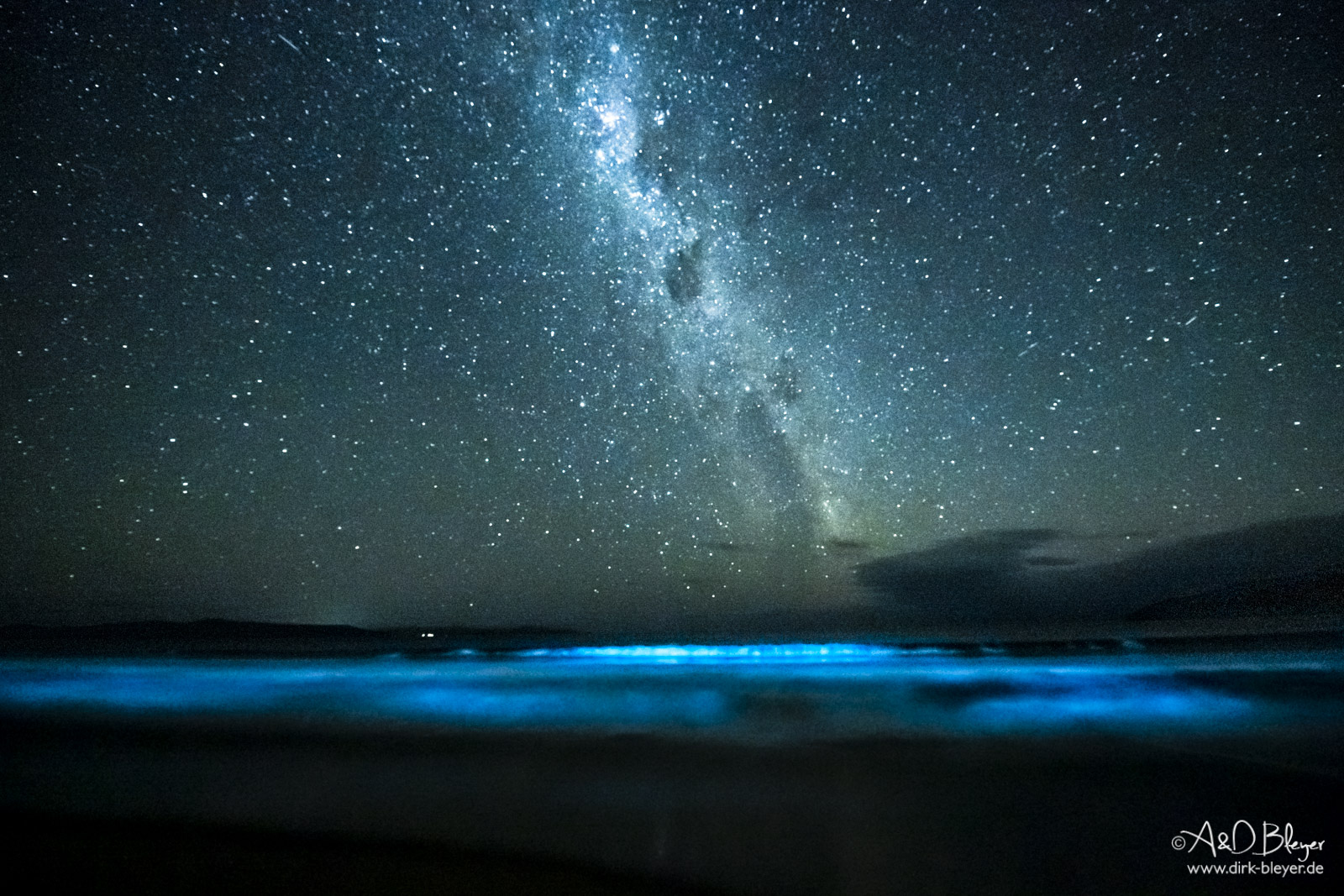 Bioluminescence in Tasmanien